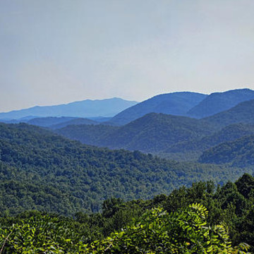 Great Smoky Mountains National Park Collection Collection