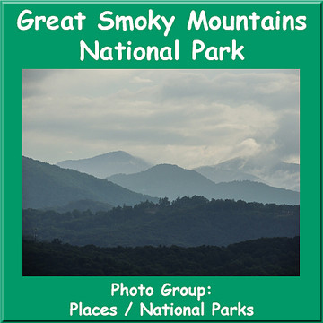 Great Smoky Mountains National Park Collection