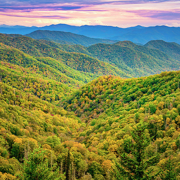 Great Smoky Mountains National Park Photography Collection
