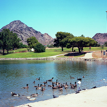 Grenada Park Phoenix AZ Collection