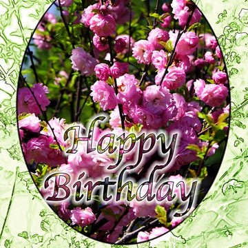 Happy Birthday - Greeting Cards Collection