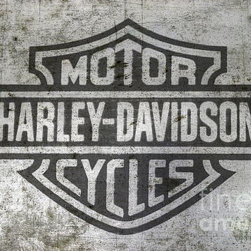 Harley Logo Collection