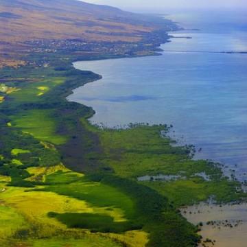Hawaii Molokai Collection