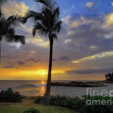 Hawaii....Elements of Aloha