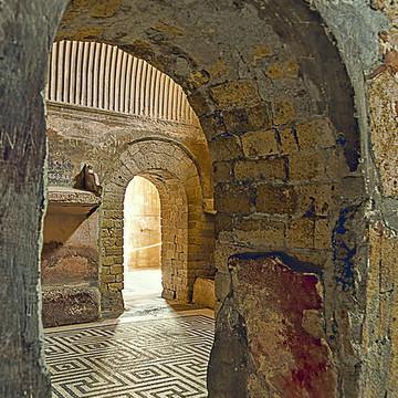 Herculaneum Collection