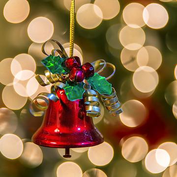 Holiday - Seasonal Collection