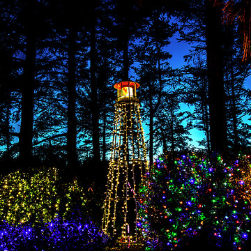 Holiday Lights 2016 Shore Acres Collection