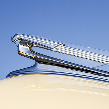 Hood Ornaments Collection