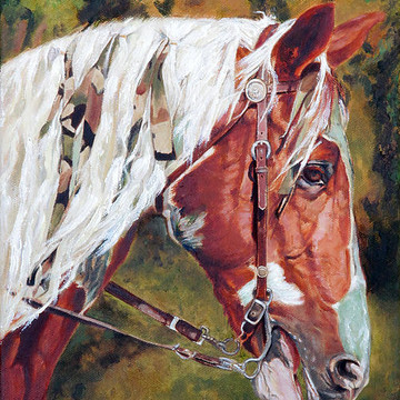 Horse and Equine Themes Collection