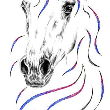 Horse Art with color Collection