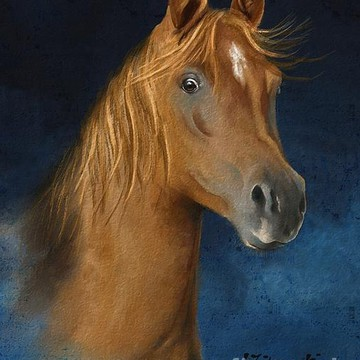Horse Paintings Collection