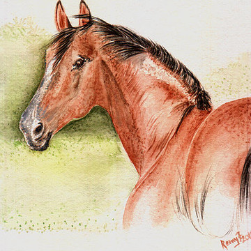 Horses and Equine Paintings Collection