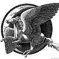 Horses-Pegasus-Unicorns-Chickens Collection