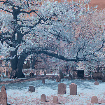 Infrared images Collection
