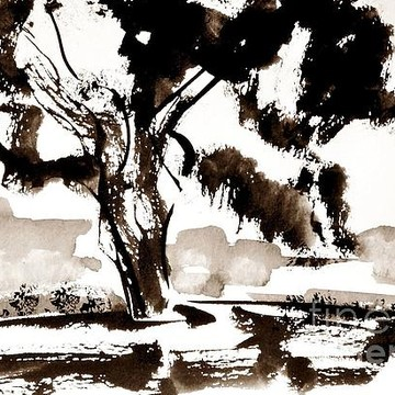 Ink Play Black and White Paintings Collection