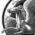 iPhone-Case-Pegasus Collection