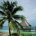 Isla Mujeras Mexico Collection