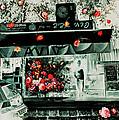 Jerusalem florists Collection