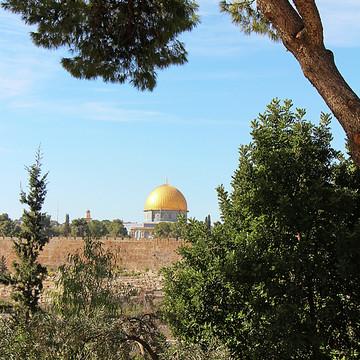 Jerusalem Collection