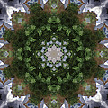 Kaleidoscope Images Collection