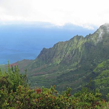 Kauai Hawaii Collection
