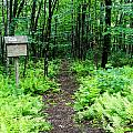Kennebec Land Trust Collection