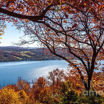 Keuka Lake Collection