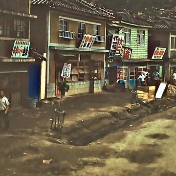 Korea 1954-1955 Collection