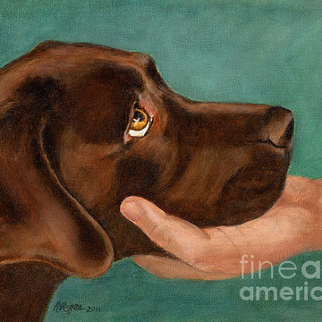 Labrador and Dog Art Collection