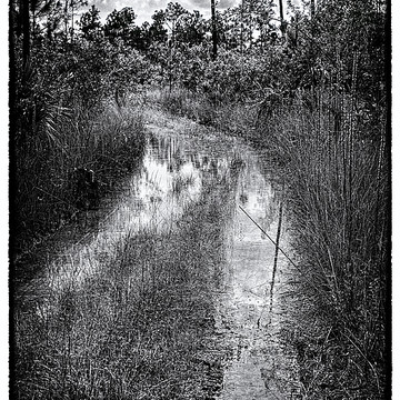 Land and seascapes in B & W Collection