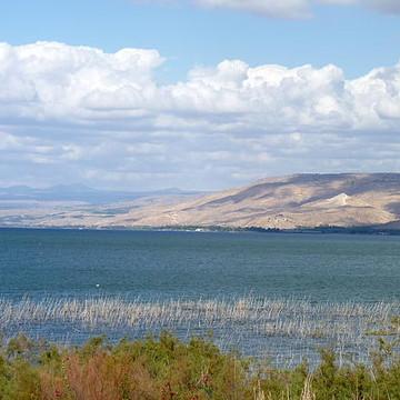 Landscape Israel Collection