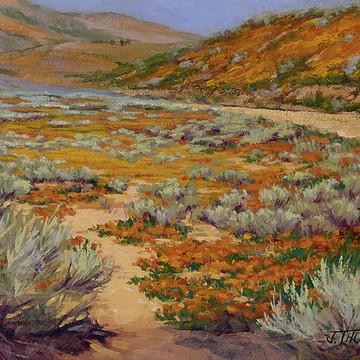 Landscape Collection