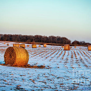 Landscape Rural Collection