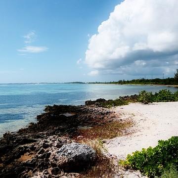 Landscapes & Seascapes Cayman Islands Collection