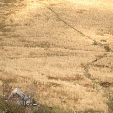 Landscapes and nature Collection