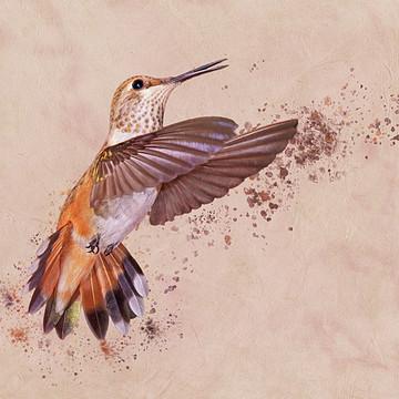 Leda - Hummingbirds Collection