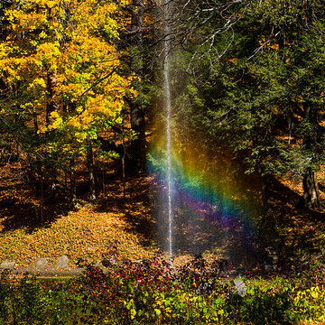 Letchworth State Park Collection