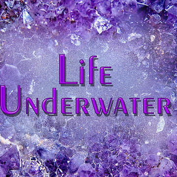 Life Underwater Collection