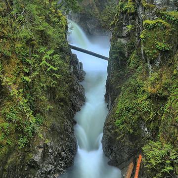 Little Qualicum Provincial Park - Vancouver Island - British Columbia - Canada Collection
