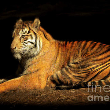 Living Creatures Painterly Style Photoart Collection