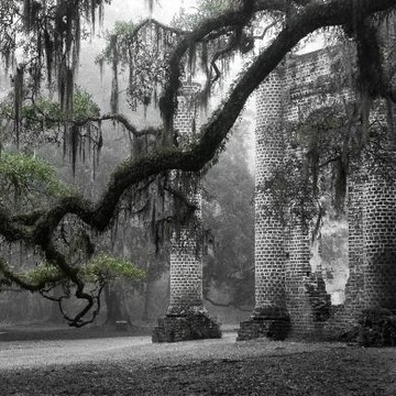 Lowcountry Scenes in Black and White Collection
