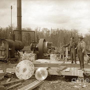 Lumberjack Logging Industry Circa 1900 Collection