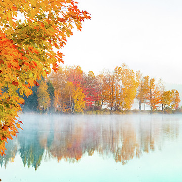 Maine Fall Foliage Collection