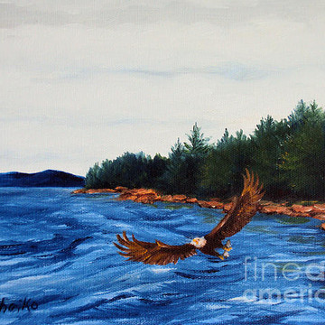 Maine Seascape Paintings Collection