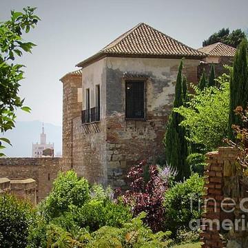 Malaga Collection