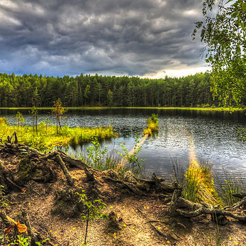 Masurian Forest Lake Collection