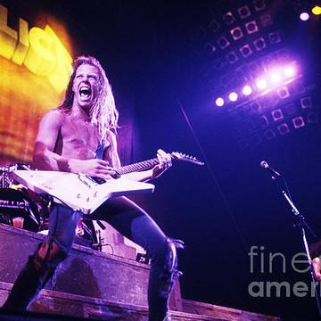 Metallica Collection