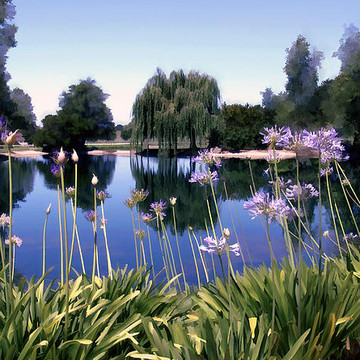Miscellaneous Landscapes Collection