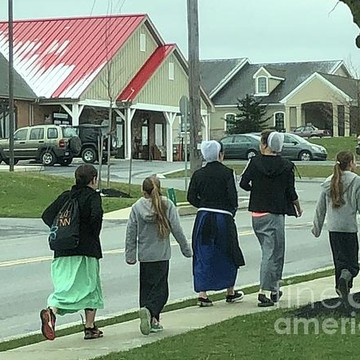 Monday in Amish Country Collection