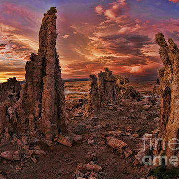 Mono Lake Collection